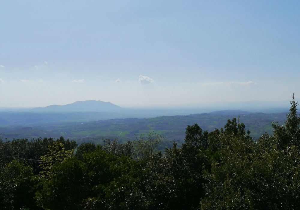 Summer view - villa rental near Rome